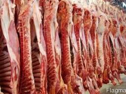 Мясо говядины , курица