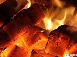 Топливные брикеты из торфа (Fuel peat briquettes) - фото 2
