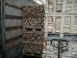 All'ingrosso di legna da ardere di Faggio, Quercia. Дрова - фото 2