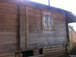 Barn wood of an old pine tree - photo 7