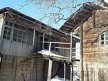 Barn wood of an old pine tree - фото 8