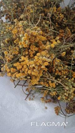 Лекарственные растения (сырье)