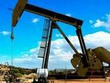 JP54, A1, D2, D6, M100, Crude oil, gasolene, LPG, LNG - photo 1