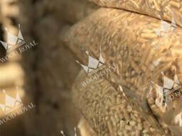 Pellet di legno