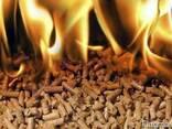 Пеллеты, брикеты топливные, дрова колотые, уголь древесный. - photo 1