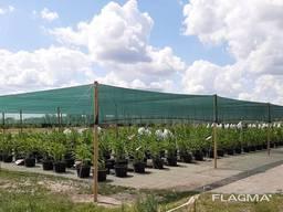 Теневая сетка - защита от непогоды для агроплощадок - photo 4