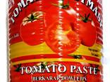 Tomato paste - photo 1
