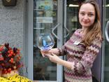 Живые бабочки - продажа готового бизнеса, франшиза. - фото 1